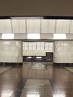 """Станция метро """"Дубровка"""".  Станционный зал. Широкие колонны-пилоны создают своеобразный портрет станции."""